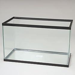 Aquarium Tank, Glass, 20 Gal