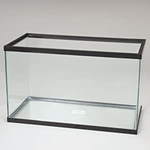 Aquarium Tank, Glass, 2-1/2 Gal