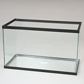 Aquarium Tank, Glass, 10 Gal
