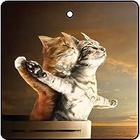 Titanic Kittens Car Air Freshener (Xmas Christmas Stocking Filler/Secret Santa Gift)