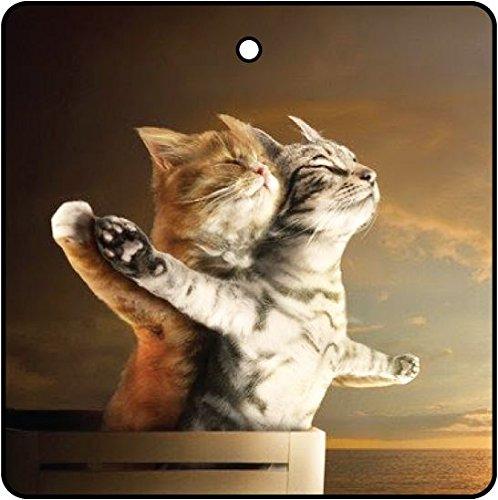 Titanic Kittens Car Air Freshener (Xmas Christmas Stocking Filler/Secret Santa Gift) AAF