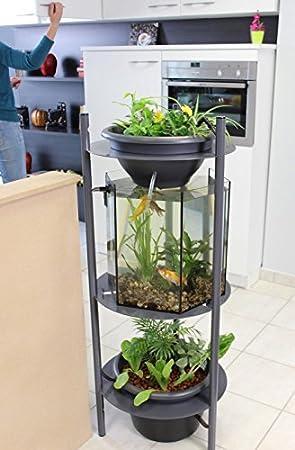 Urbanleaf Acuario acuaponia SYMBIUM 120, jardín de interior, fácil,: Amazon.es: Productos para mascotas