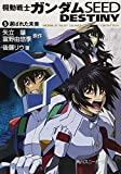 Future Mobile Suit Gundam SEED DESTINY chosen (5) (Kadokawa Sneaker Bunko) (2006) ISBN: 4044291128 [Japanese Import]