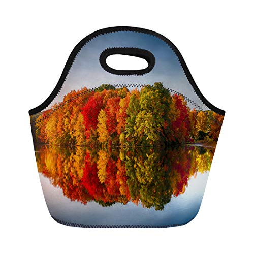 Semtomn Neoprene Lunch Tote Bag Foliage Fall Colors Reflecting in Pond Water Reflection Leaves Reusable Cooler Bags Insulated Thermal Picnic Handbag for Travel,School,Outdoors, Work