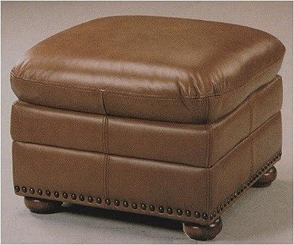 Enjoyable Amazon Com Doheny Transitional Light Brown Leather Nail Evergreenethics Interior Chair Design Evergreenethicsorg