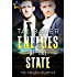 Enemies of the State (The Executive Office Book 1)