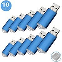 10Pack USB Flash Drive USB2.0 Memory Stick Memory Drive Pen Drive (1G, Blue)