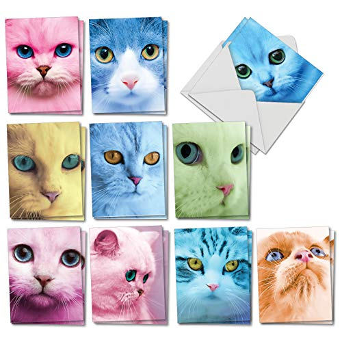 Fancy Feline Faces: 20 Assorted Blank All Occasions Notecards Featuring Extreme Cat Closeups in a Variety of Hues, with Envelopes. AM7179OCB-B2x10 ()