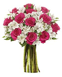 22 Long Stem Alstro - Rose by Benchmark Bouquets