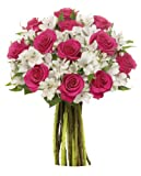 Benchmark Bouquets Signature Roses and Alstroemeria, No Vase