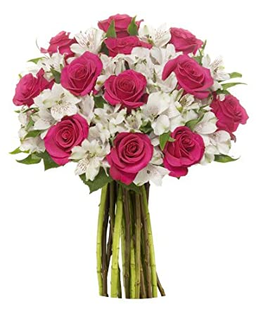 Amazon Benchmark Bouquets Signature Roses And Alstroemeria No