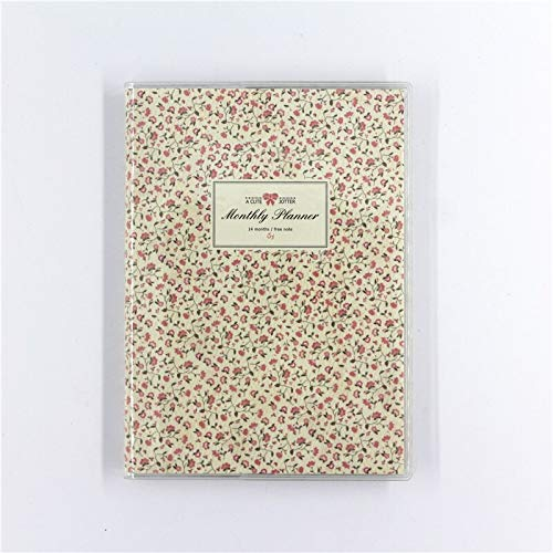 Amazon com : Notebooks | Cute Jotter Monthly Planner 14