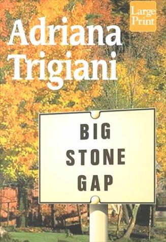 Big Stone Gap ebook