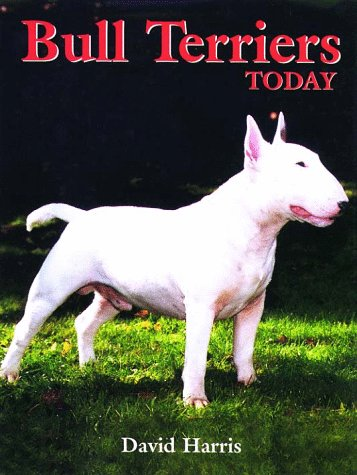 Bull Terriers Today by Brand: Howell Book House