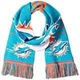 Forever Collectibles NFL Football 2014 Official Big Logo Team Scarf - Pick Team