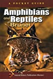 Amphibians and Reptiles of Brunei: A Pocket Guide