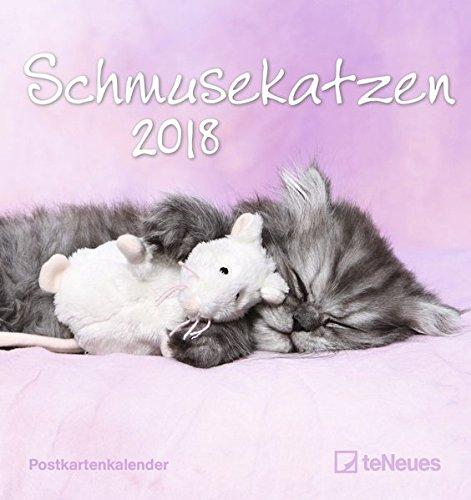 Schmusekatzen 2018 - Postkartenkalender, Tierkalender, Katzenkalender - 16 x 17 cm