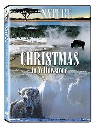 Amazon.com: Christmas in Yellowstone: Linda Hunt, Shane Moore ...