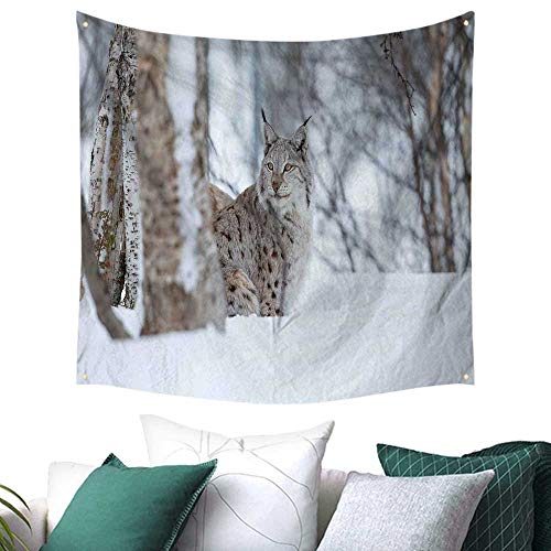 Animal Tapestry for Dorm European Lynx Snowy Cold Forest Norway Nordic Country Wildlife Apex Predator Home Decor Couch Cover 55W x 55L Inch Pale Brown White