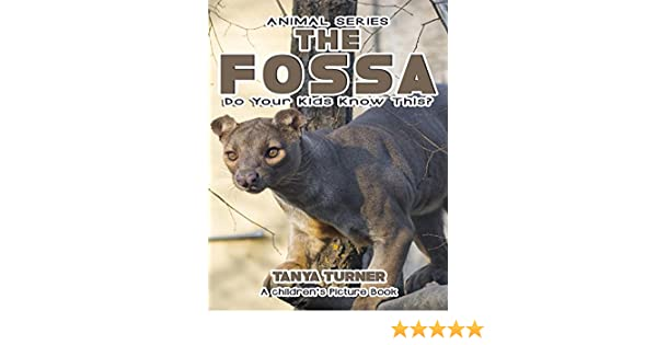 Fossas! Learn About Fossas and Enjoy Colorful Pictures - Look and Learn! (50+ Photos of Fossas)