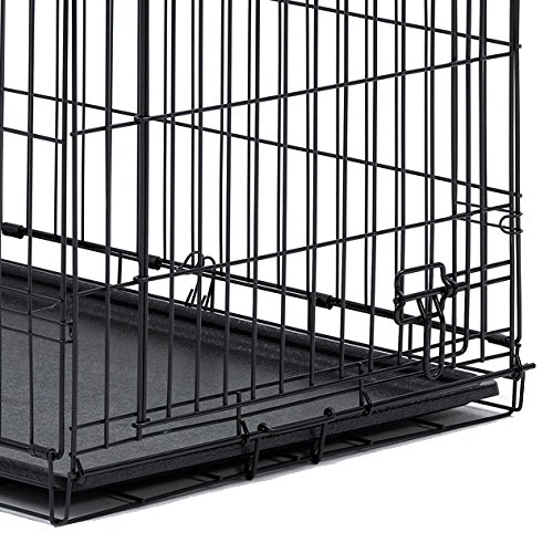 Midwest 36quot icrate folding metal dog crate w divider for 36 inch dog crate with divider