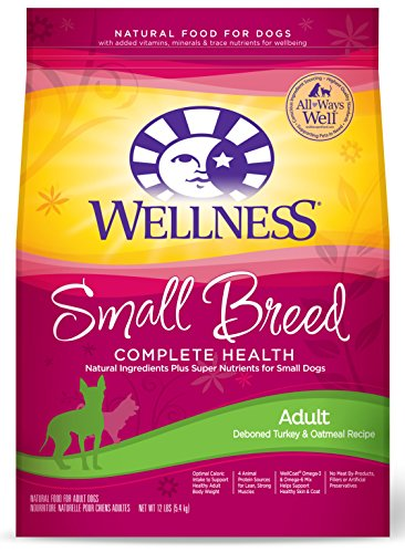 Wellness Complete Oatmeal Natural Food product image