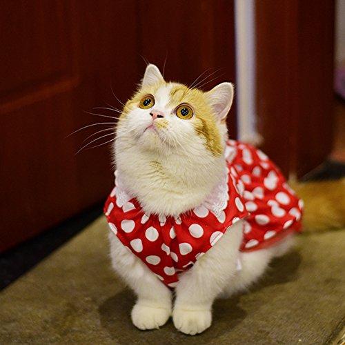 wintefei Fashion Polka Dot Print Faux Pearl Lace Dog Cat Dress Sleeveless Pet Clothes - Pink 10