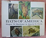 img - for Bats of America book / textbook / text book