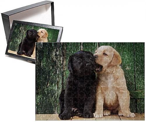 photo-jigsaw-puzzle-of-black-a-yellow-labrador-dog-puppies-by-barn-door