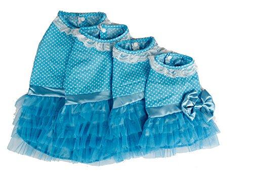 Pet Dog Puppy Summer Dress Clothes, Fancy Ribbon Flower Lace Skirt, Cute polka Dot Princess Apparel (Blue, Small)
