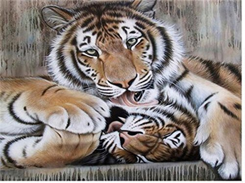 Shukqueen DIY Paint by Numbers for Adults, DIY Oil Painting Kit for Kids Beginner - Tiger 16X20 Inch (Framed Canvas)