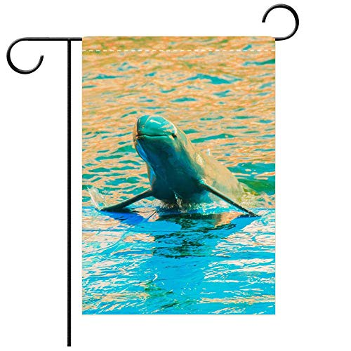 Custom Personalized Garden flag Outdoor flag Cute Irrawaddy dolphin (Orcaella brevirostris) is floating in the water and jumping to Decorative Deck, patio, Porch, Balcony Backyard, Garden or - Dolphins Irrawaddy