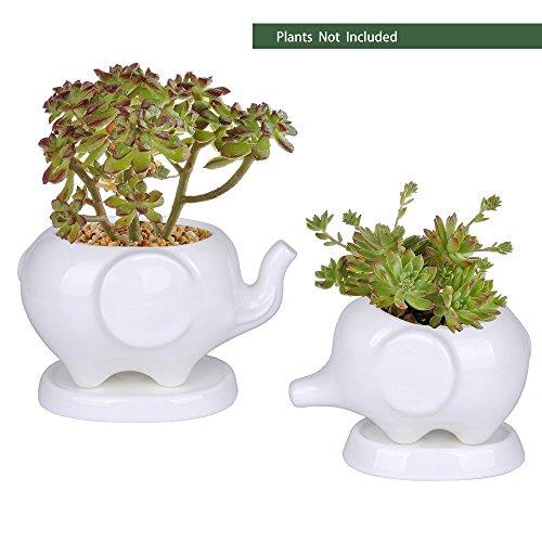 Elephant Pot (Kawaii Animals Ceramic Flower pot 2 Styles Elephant Succulent Planter Cactus Succulent Plants Flower Cute White Pot (2 Elephants))