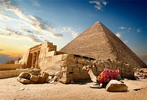AOFOTO 8x6ft Egyptian Pyramid Backdrop Desert Camel Photography Background Adult Artistic Portrait Culture History Ancient Architecture Trave Photo Shoot Studio Props Video Drop Vinyl Wallpaper Drape