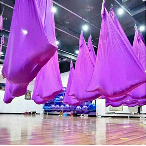 YHK Yoga Hammock 197 x 110 inches Anti-gravity Aerial Yoga Swing Belt Inversion Trapeze for Yoga Training(purple with Ring)