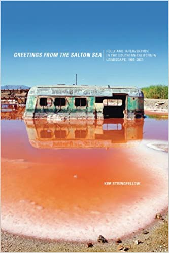 Greetings from the Salton Sea Folly and Intervention in the