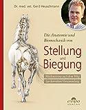 Die Anatomie und Biomechanik von Stellung und Biegung: Meilensteine auf dem Weg zur korrekten Versammlung
