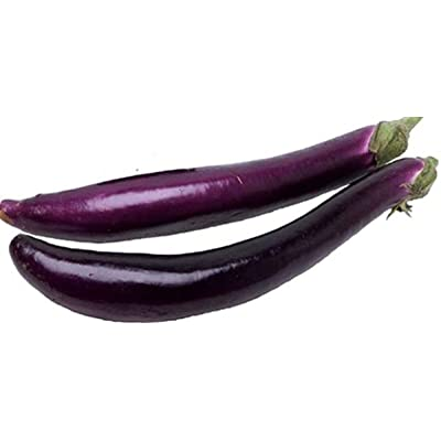Pingtung Long F1 Eggplant Seeds (25 Seeds) : Garden & Outdoor
