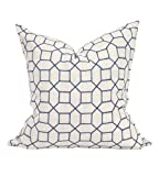 Howard Elliot 3-598F 24 x 24 in. Davida Kay Trellis Indigo Pillows - Down Insert