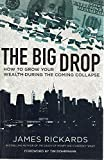 img - for The Big Drop: How To Grow Your Wealth During the Coming Collapse book / textbook / text book