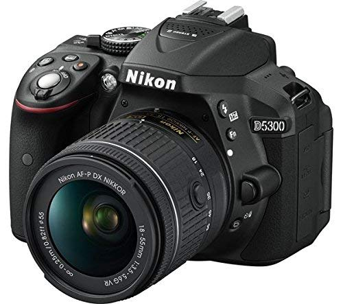 Nikon D5300 24.2MP Digital SLR Camera (Black) with AF-P 18-55mm f/ 3.5-5.6g VR Kit Lens, 16GB Card and Camera Bag