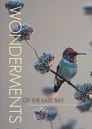 Wonderments of the East Bay by Sylvia Linsteadt, Malcolm Margolin (2014) Paperback