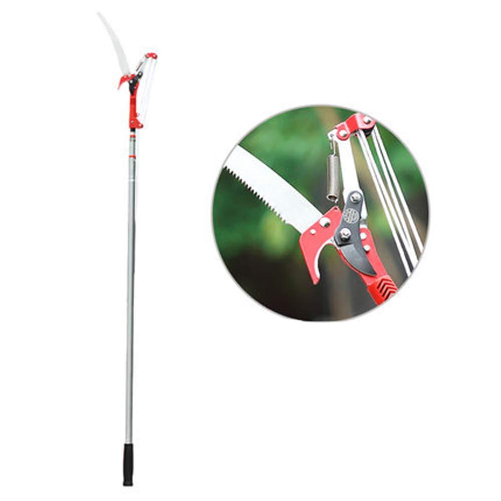 BAOSHISHAN Extendable Pole Tree Pruner & Saw 10 foot