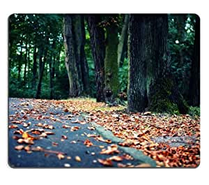 Autumn Season Fallen Scattered Leaves Mouse Pads Customized Made to Order Support Ready 9 7/8 Inch (250mm) X 7 7/8 Inch (200mm) X 1/16 Inch (2mm) High Quality Eco Friendly Cloth with Neoprene Rubber Luxlady Mouse Pad Desktop Mousepad Laptop Mousepads Comfortable Computer Mouse Mat Cute Gaming Mouse pad
