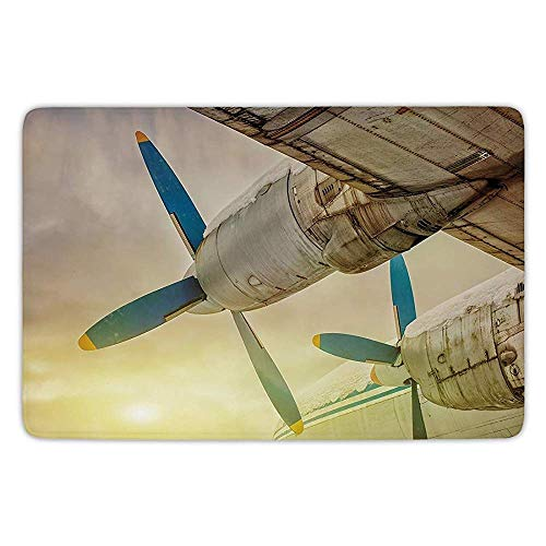nny Door Mat Carpets Indoor Outdoor,Vintage Airplane Novel Classic Adornment,Senior Art Wing Aircraft with Propellers at Sunset Snowy Winter Sky Novel Classic Adornmentative,Brown ()