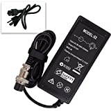 Bestcompu ® 48W 24V 2A Replacement Electric Scooter Battery Charger For RAZOR E100 E175 E200 E300 E125 E150 E500