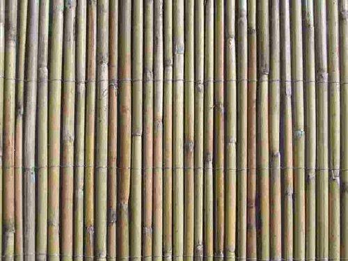 MGP White Fern Fence 6'H x 6'W