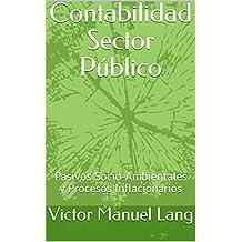 Contabilidad Sector Público: Pasivos Socio-Ambientales y Procesos Inflacionarios (Spanish Edition)