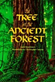 The Tree in the Ancient Forest, Carol Reed-jones, 1883220319