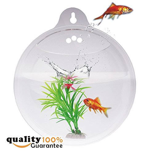 PMLAND Wall Mounted Acrylic Fish Bowl